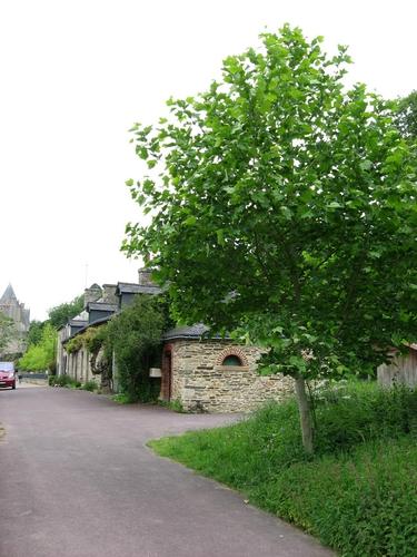 Bretagne Château de Josselin MORBIHAN 015_redimensionner