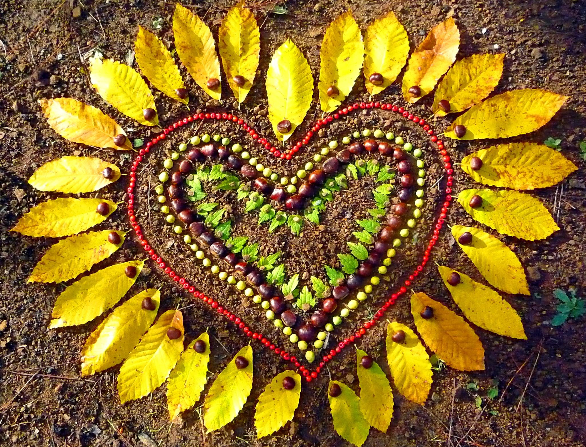 coeur flamboyant yurtao