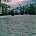 Création album hiver