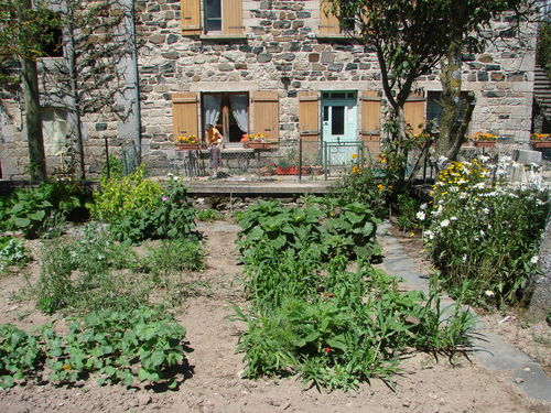 2008 08 02 Une partie de mon jardin