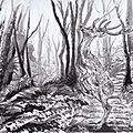 Cerf sika en forêt