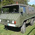 STEYR PUCH Pinzgauer 710M 4x4 baché Lipsheim (1)