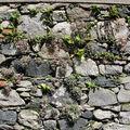 mur pour Hélène