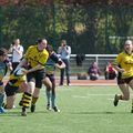 73IMG_0698T