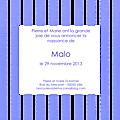 Fp rayures verticales larges bleu blanc modèle Malo 2