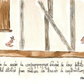 91_lapins_compagnonnage