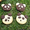 Sablés panda ou ours