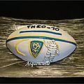 Gâteau ballon rugby ASM clermont Bonhomme Michelin 3D cake