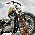 Harley davidson - sportster 883 (customized)
