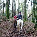 Balade à cheval dans la forêt P1080280