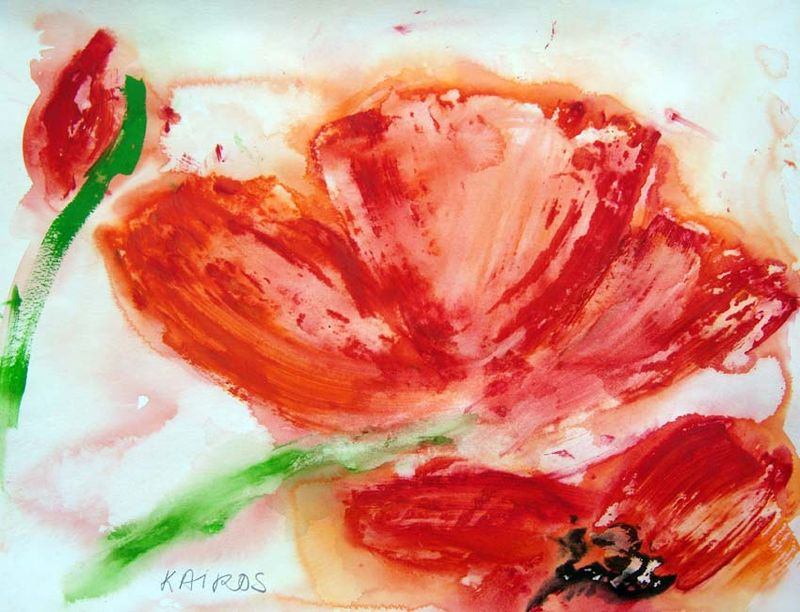 Coquelicot paysage