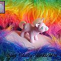 Baby Tiddley-Winks (bb Tidou)