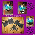 Les chauves souris,araignées et chat noir.