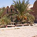 Djerba Septembre 2007 111