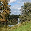25/11/17 : Petite balade au bord du Rhin # 1