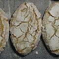 RICCIARELLI , Biscuits Italiens ( aux amandes ) 185