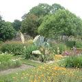 Daoulas le jardin des simples4