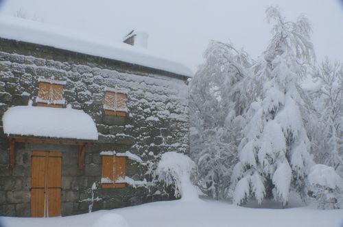 2008 12 15 La maison de Mr et Mme Piégay sous la neige et les arbres enneigés