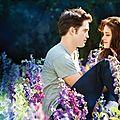 Intégrale de la <b>Saga</b> <b>Twilight</b> en DVD et Blu-Ray: les détails