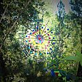 araignée salivant toile multicolore yurtao