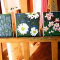 Lavande - paquerettes- fleurs de pommiers -
