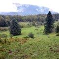 Plateau du Cournau...