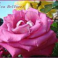 roselude3