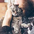 [GRIF' Rassure] Pas de psychose! Votre <b>chat</b> n'est pas contagieux!