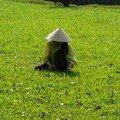 VIETNAM : un rêve réalisé-Mars-2007
