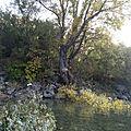 Commune: castellane cours d'eau: le verdon (domaine du verdon)