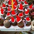 Cactus déguisés en Père Noël 21 décembre 2007