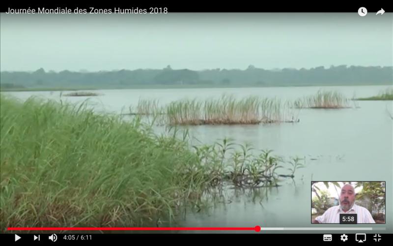 Henri Michel Auguste parle des mangroves et des zones humides, 2018