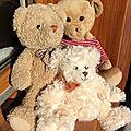 L'histoire des trois petits <b>oursons</b>...