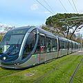 Bordeaux : 10 citadis supplémentaires