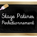 Stage perfectionnement patines et effets