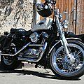 Harley 011
