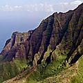 HAWAII (ETATS-UNIS) - Le drone et l'hibiscus