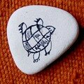 la tortue qui nage