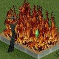 Les Sims de ClooLoe