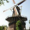 De Ster Rotterdam Kralingem hollande