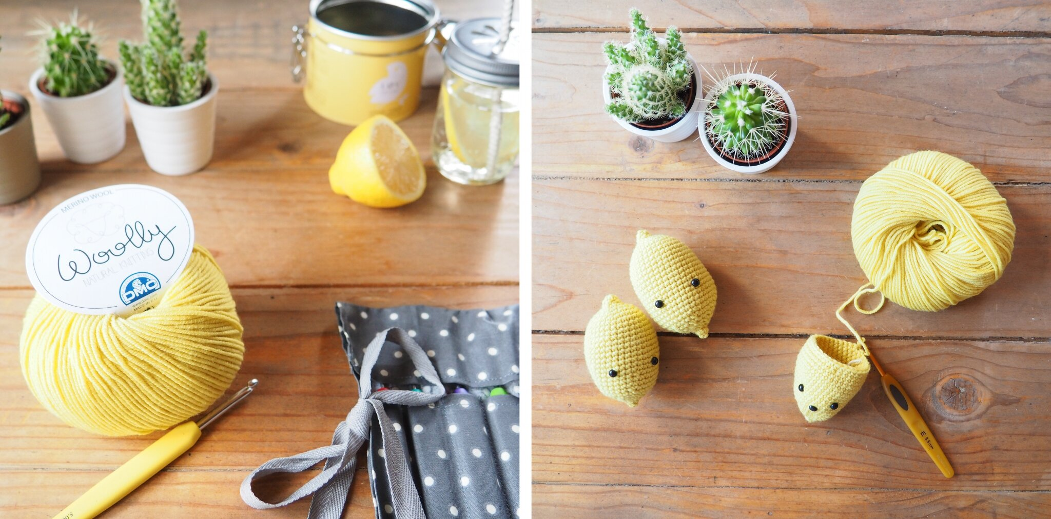 Lemon 3 P2040349