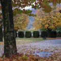 L'automne à ugine....