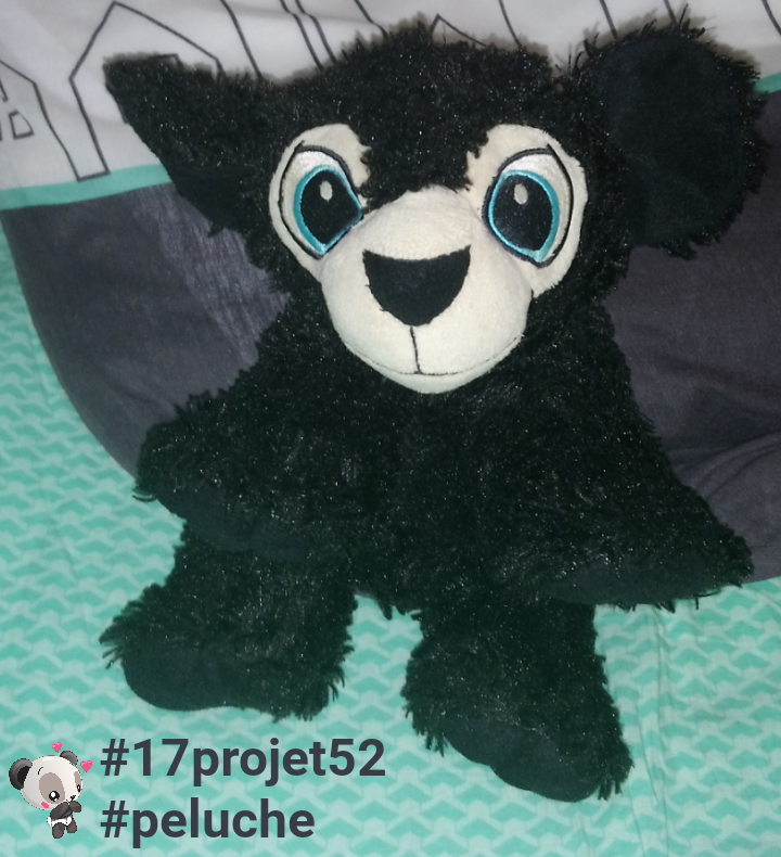 35 projet52 2017 - Peluche