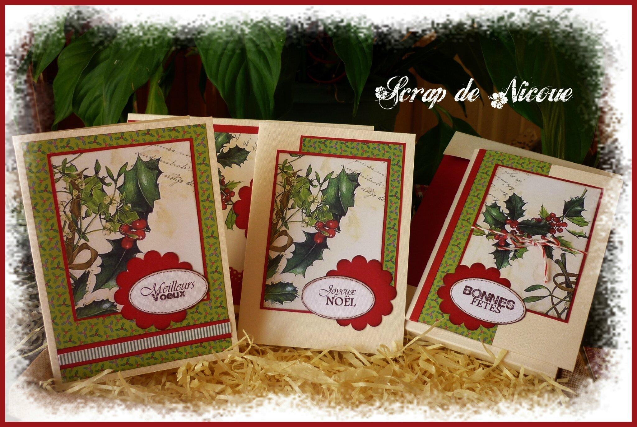 Le houx et le gui, symboles du soltice d'hiver et de Noël...