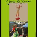 Affiche de l'exposition de james de demo et de pascal marcel