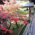 Japon 2010 296