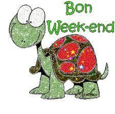bon week end tortue