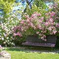 Banc dans le Jardin de Chantal et Alain - Jouy-le-Potier (45)