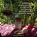ESTOGAL ou Mistura em pó de 3 rizomas: galanga, gengibre e zedoária