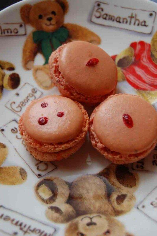 macarons orange sanguine